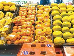 开一家水果店创业其实很简单,TT优果用自己的实力来说话!