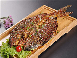 魚真探·單人烤魚飯加盟需要多少的投資?