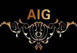 AIG琥珀總代理加盟
