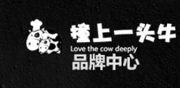 撞上一头牛加盟