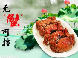 武昌湖大闸蟹加盟