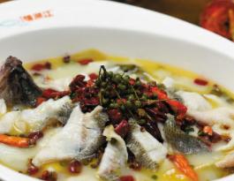 江湖情酸菜魚加盟